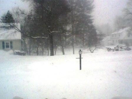 blizzard front yard view