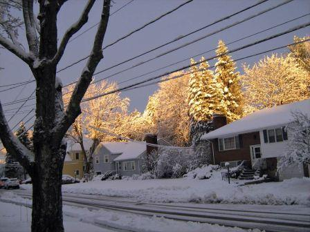 sunset and snow on trees