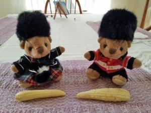 Sir Oliver and Sir Angus with corn